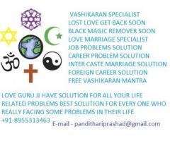 vashikaran specialist in delhi 918955313463